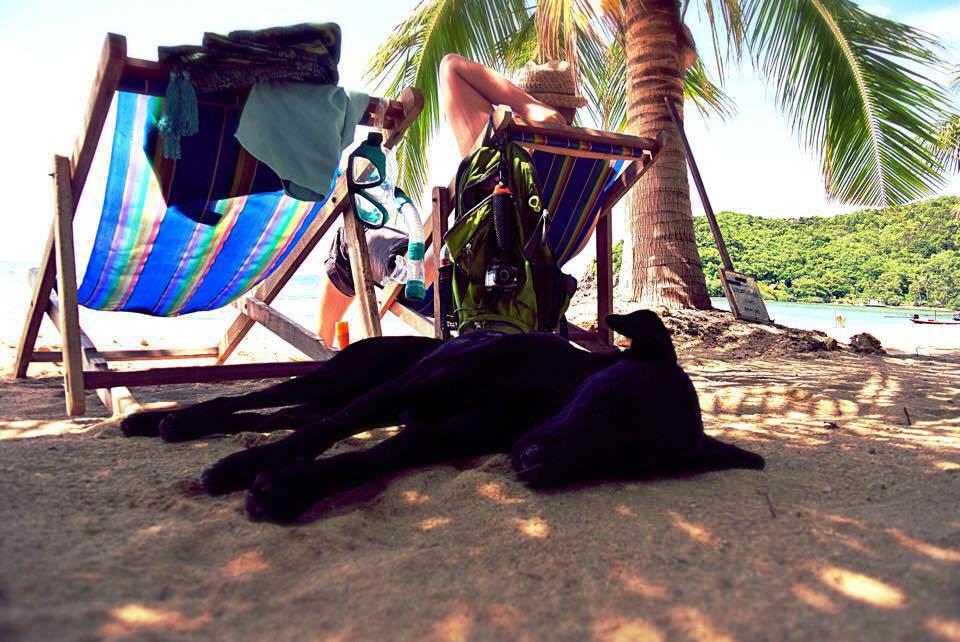 Erholung vom Weltreise-Stress